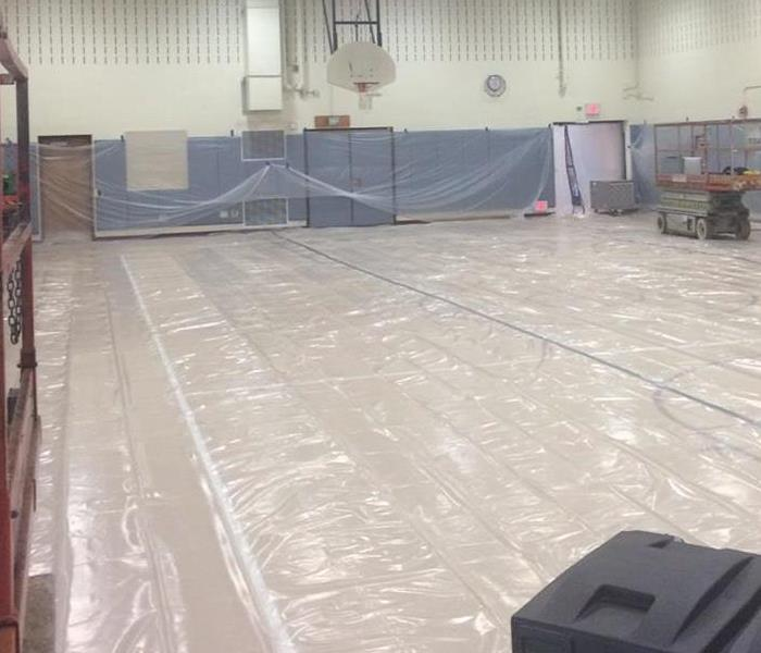 Mold remediation in school gym