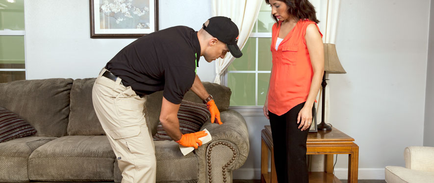 Pottstown, PA carpet upholstery cleaning